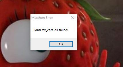 Load mx_core.dll failed.JPG