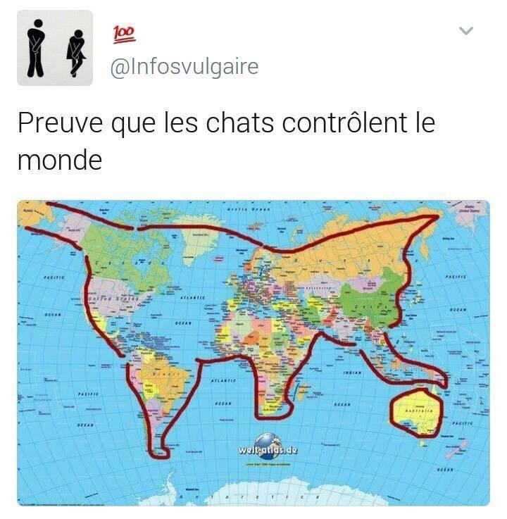 ChatMonde.jpg